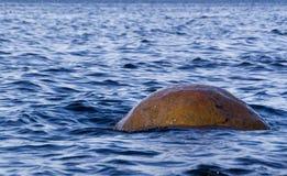L'eau bleue et rocher côtier Photo libre de droits