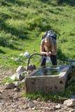 L'eau blonde de boissons de fille Photographie stock libre de droits