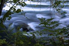L'eau calme Photo libre de droits