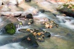 L'eau circulant sur des roches Images stock
