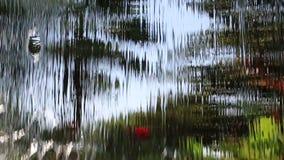 L'eau circulante clips vidéos