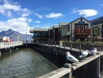 L'eau clair comme de l'eau de roche de turquoise de bord de mer de Queenstown le jour ensoleillé photo libre de droits