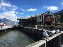 L'eau clair comme de l'eau de roche de turquoise de bord de mer de Queenstown le jour ensoleillé photos libres de droits