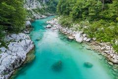 L'eau clair comme de l'eau de roche en rivière Soca, Triglav, Slovénie Images stock