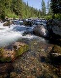 L'eau claire Images stock