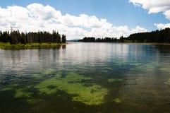 L'eau claire Images libres de droits