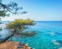 L'eau claire dans la croûte dans la baie de mer près de Portoferraio, Elba Island Photos stock