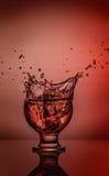 L'eau claire tentant le whiskey abstrait éclaboussant sur le fond de gradient de la couleur bleue sur la surface réfléchie 05 Image libre de droits