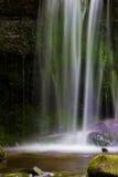 L'eau colorée Photos libres de droits