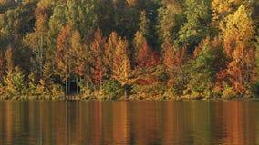 L'eau d'automne Photos libres de droits