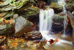 l'eau d'automne Photo stock