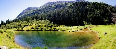 L'eau d'espace libre de Cristal dans un étang vert Photos libres de droits