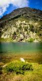 L'eau d'espace libre de Cristal dans un lac mountain Image libre de droits