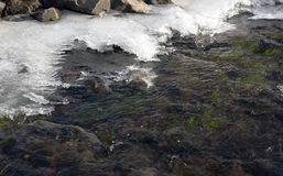 L'eau d'hiver Photo libre de droits