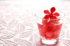 L'eau d'infusion, boisson régénératrice de pastèque Photos stock