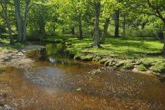L'eau d'Ober au pont d'Ober Images stock