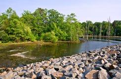 L'eau dans la région sauvage Photographie stock libre de droits
