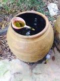 L'eau dans le pot Photographie stock libre de droits