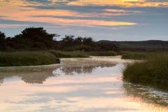 L'eau dans les dunes Photographie stock