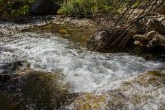 L'eau dans un courant de montagne photo stock