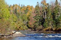 L'eau de cascade au-dessus des roches Photo stock