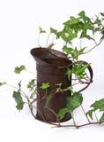 l'eau de cru de vigne de conteneur photographie stock libre de droits