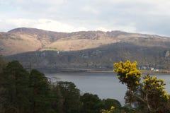 L'eau de Derwent : lac et montagnes, avec l'ajonc jaune photos stock