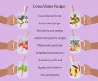 L'eau de Detox avec des fruits Photographie stock libre de droits