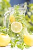 L'eau de Detox photos stock