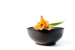 l'eau de fleur de cuvette Photographie stock libre de droits