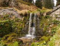 L'eau de forêt Photographie stock
