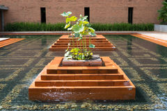 L'eau de jardin Photo stock