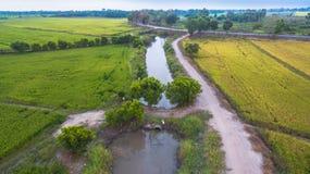L'eau de l'utilisation de barrage pour le riz cultivé Photo libre de droits