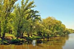 L'eau de la rivière Images stock
