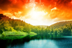 l'eau de lac de vert de forêt Images stock