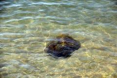 L'eau de mer clair comme de l'eau de roche et propres superbes, voient des roches sur le fond de l'océan de nature de mer, sous l Images libres de droits