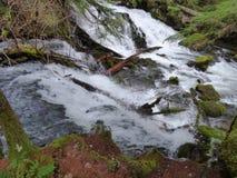 L'eau de précipitation images libres de droits