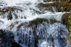 L'eau de précipitation au-dessus des pierres Photos libres de droits