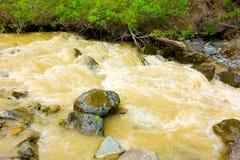 L'eau de précipitation boueuse par l'exploitation de placer dans le Canada du nord Images stock