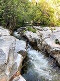L'eau de précipitation d'une rivière photo libre de droits