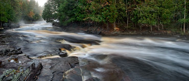 Rivière d'esturgeon Photo libre de droits