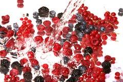 l'eau de préparation de fruits Photo stock