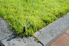 L'eau de pulvérisation automatique de tête arroseuse au-dessus de l'herbe verte Photos libres de droits