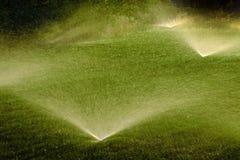 L'eau de pulvérisation d'arroseuse sur la cour verte luxuriante de pelouse Photo stock