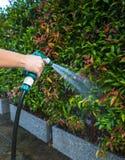 L'eau de pulvérisation de bec de tuyau Photographie stock
