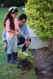 L'eau de pulvérisation de père et de fille à planter Photographie stock