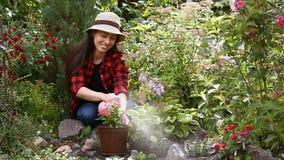 L'eau de pulvérisation de jardinier sur des fleurs banque de vidéos
