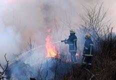 L'eau de pulvérisation de sapeurs-pompiers au feu de forêt le sapeur-pompier s'éteint a image libre de droits