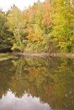 l'eau de réflexion d'automne de couleur Photographie stock