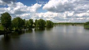 L'eau de rivière calme reflète des arbres et des silhouettes de nuages banque de vidéos